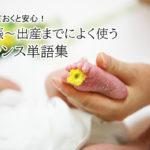 フランス語圏で出産する女性必見!妊娠~出産で使ったフランス単語集