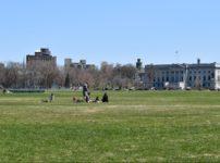アブラハム平原でピクニックをする人