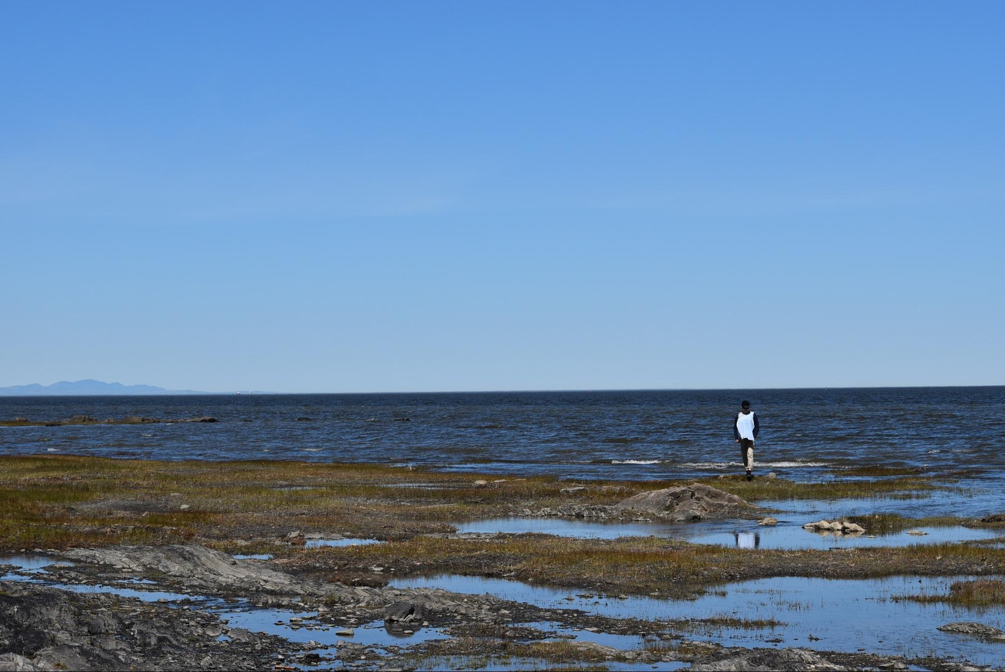 オルレアン島の風景