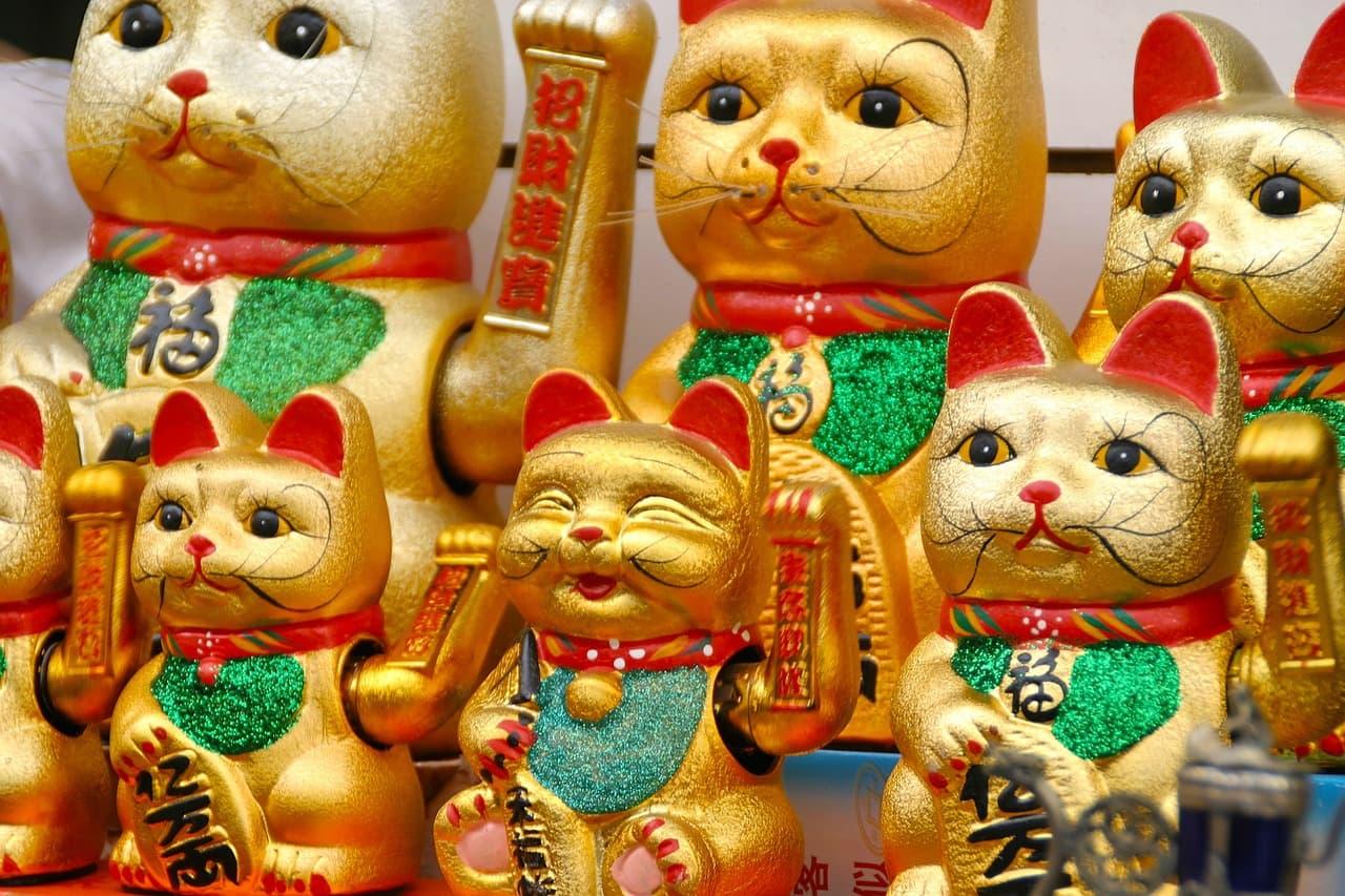 日本文化や日本のことに詳しくなる