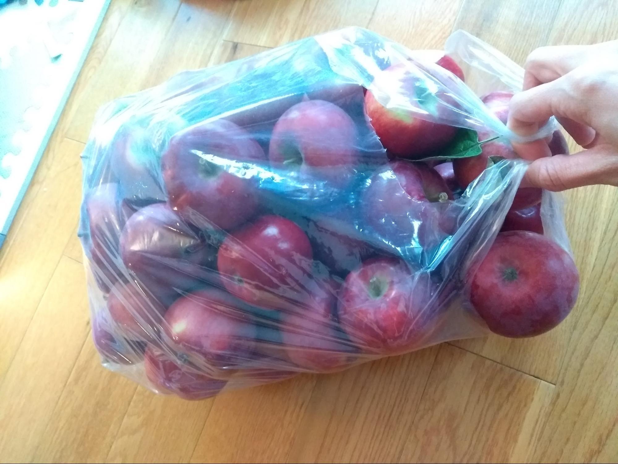 リンゴ狩りのりんご