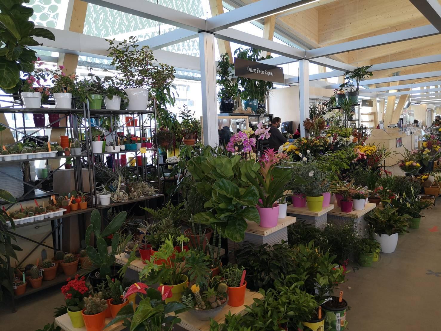 ソントフォワ市場の花売り場